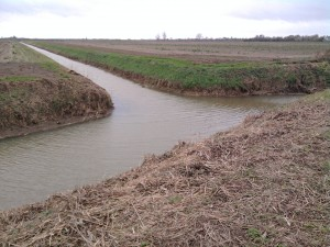 Drainage ditches mark out field boundaries