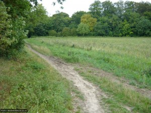 A left turn and a short stretch beside the field