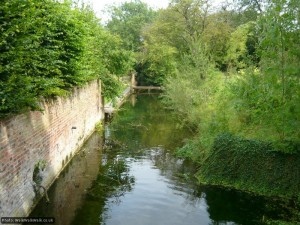 The river, briefly tamed, passes by gardens