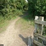 Emerge from this wooden bridge and turn right down the path ahead