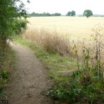 Not the route: this path goes to Maydencroft Manor