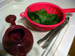 Nettles washed and ready for the teapot