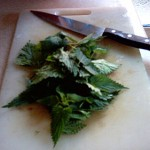 Roughly-chopped nettles on chopping board