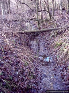 Overhung stream bed