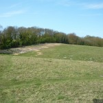 Chalk downland cleared of encroaching scrub
