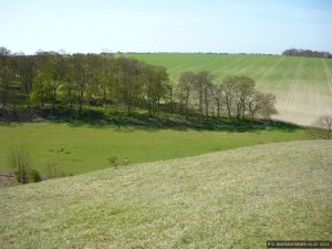 Another view of the lynchets