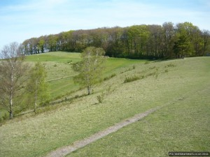 The ever-present golf course