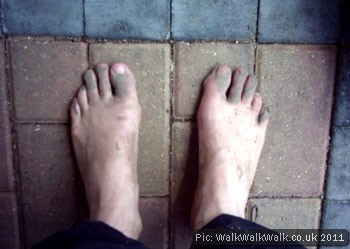 Muddy feet on a brick surface
