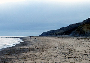 Cromer beach and cliffs