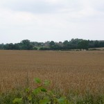 Looking over the fields at the Westmill estate