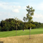 Well-kept fairways and greens